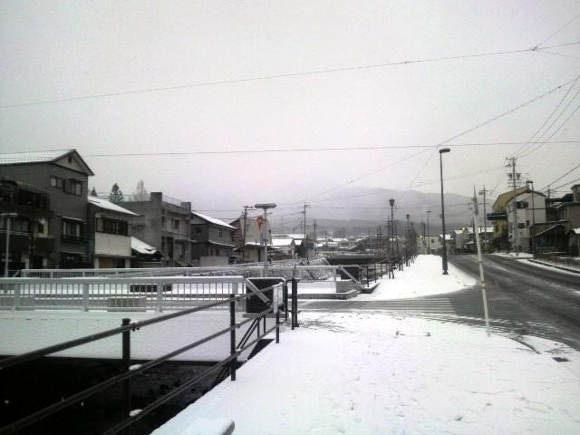 またまた雪です_f0151639_14225231.jpg