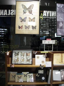 YOUNG ARTISTS\' BOOKS FAIR_4th 始まりました。_c0096440_650215.jpg
