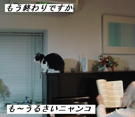 b0147444_2038937.jpg