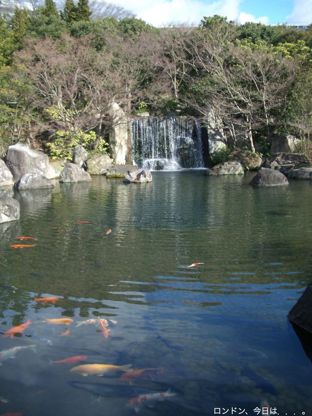 日本ちょこっと旅、姫路城_a0137487_20571249.jpg