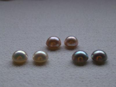 真珠養殖場の見学ができます♪♪♪_e0028387_0182517.jpg