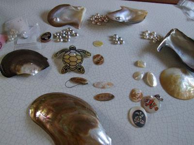 真珠養殖場の見学ができます♪♪♪_e0028387_041168.jpg