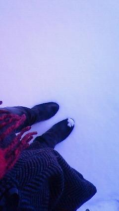 雪。_a0012423_16193192.jpg
