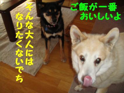 c0211642_13192433.jpg