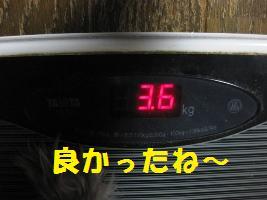 d0140668_14203232.jpg