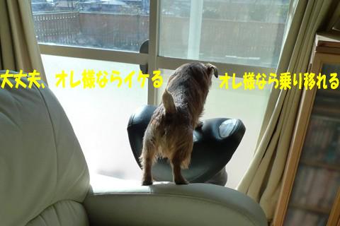 d0043478_0293650.jpg