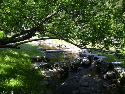犬鳴きダム(司書の湖)の奥に、こんなキレイな公園が。_e0188087_144088.jpg