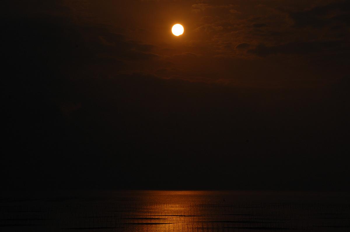 1月15日の部分日食_e0174091_14364667.jpg