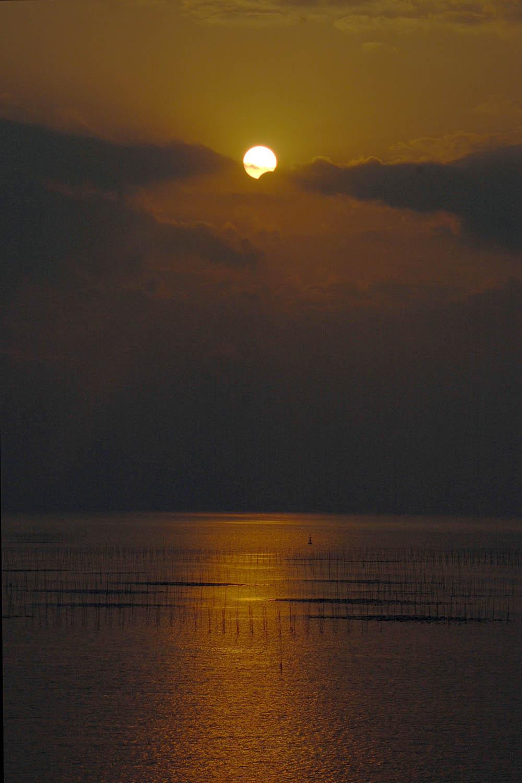 1月15日の部分日食_e0174091_14365537.jpg