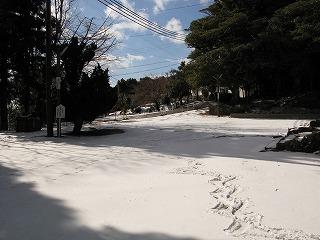寒くても・・・_c0212298_1855512.jpg