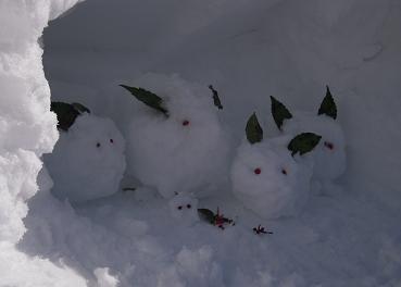 雪うさぎ_c0213599_2239391.jpg