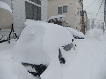 雪 雪 雪!!_c0226202_8462711.jpg
