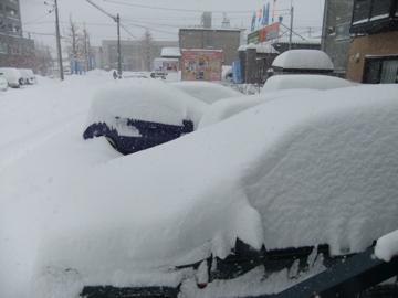 雪 雪 雪!!_c0226202_8464399.jpg
