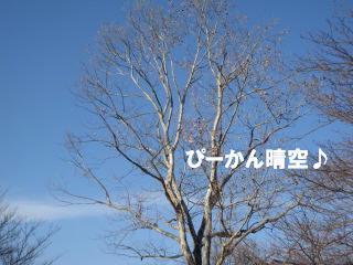 c0185516_22215070.jpg