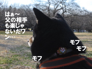 c0185516_22402520.jpg