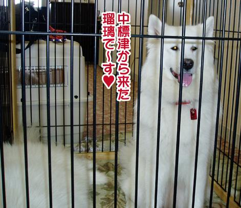 強者冬オフ〜_a0044521_21425864.jpg