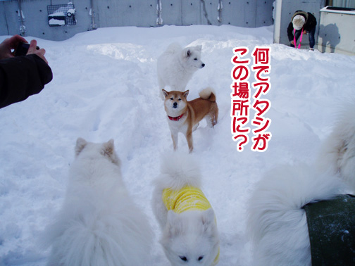 強者冬オフ〜_a0044521_2145433.jpg