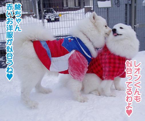 強者冬オフ〜_a0044521_2150285.jpg