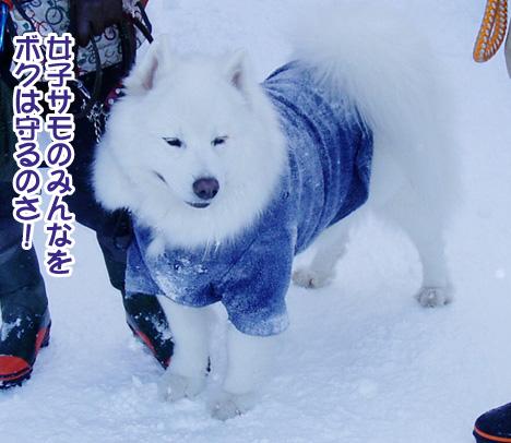 強者冬オフ〜_a0044521_21513714.jpg