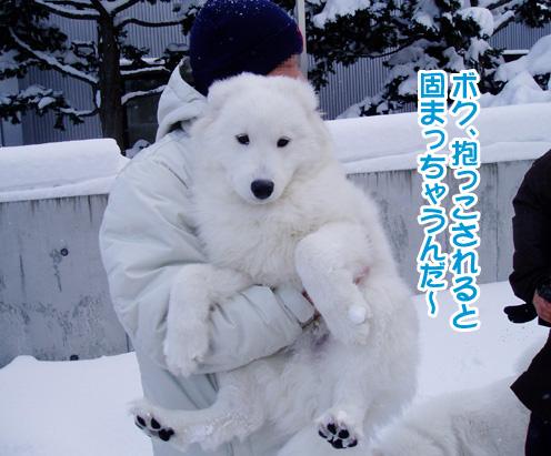 強者冬オフ〜_a0044521_21525318.jpg
