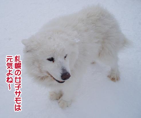 強者冬オフ〜_a0044521_22115485.jpg