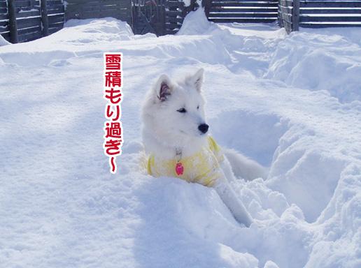 強者冬オフ〜_a0044521_22155850.jpg