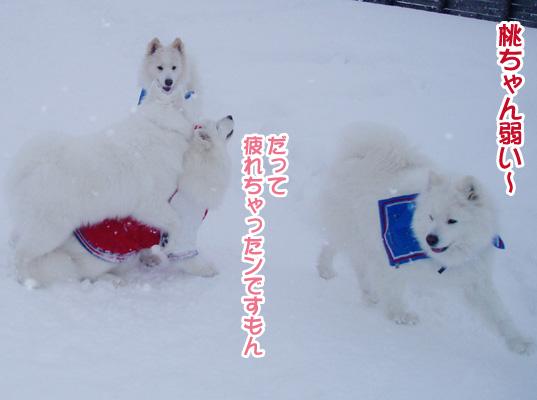 強者冬オフ〜_a0044521_22203639.jpg