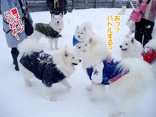 強者冬オフ〜_a0044521_22221566.jpg