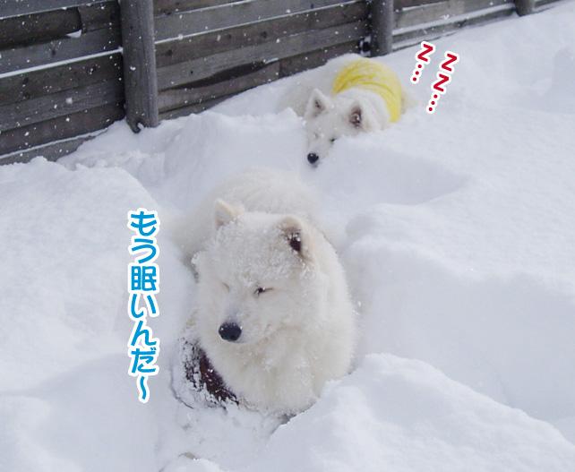 強者冬オフ〜_a0044521_22232887.jpg