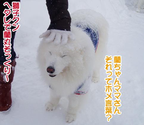 強者冬オフ〜_a0044521_22244883.jpg