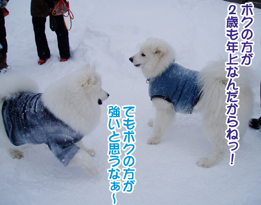 強者冬オフ〜_a0044521_2244667.jpg
