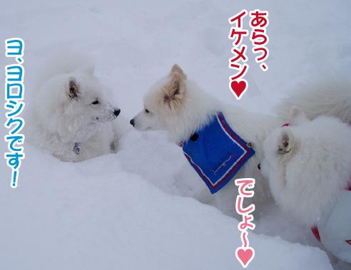 強者冬オフ〜_a0044521_2252822.jpg