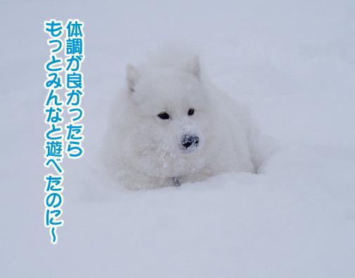 強者冬オフ〜_a0044521_226821.jpg
