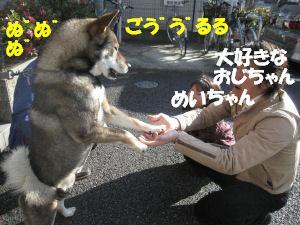 f0143123_20261550.jpg
