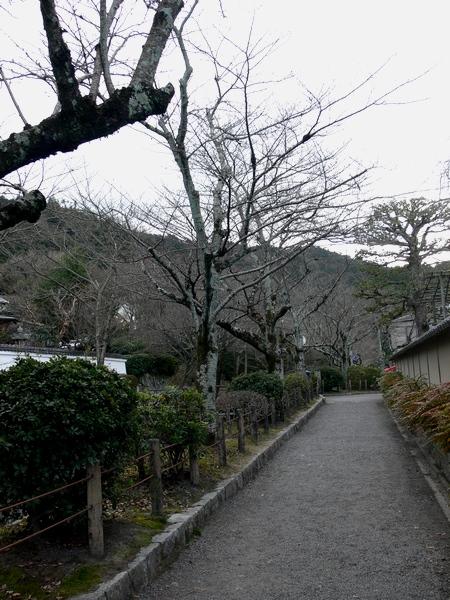 「京都・冬の旅・哲学の道~南禅寺へ」_d0133024_1491215.jpg