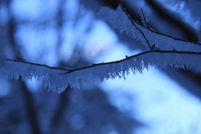 霧氷の三峰山 1235m 奈良県_d0055236_21283122.jpg