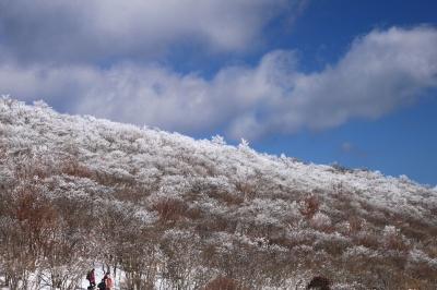 霧氷の三峰山 1235m 奈良県_d0055236_217845.jpg