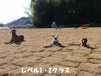 f0186040_2029649.jpg