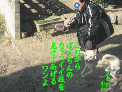 b0151748_19512260.jpg