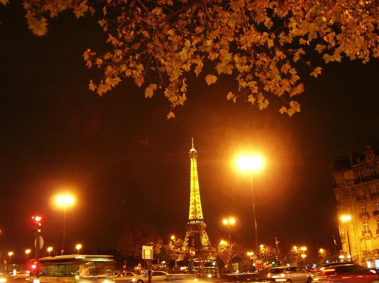 Novembre 2009_f0058956_956218.jpg
