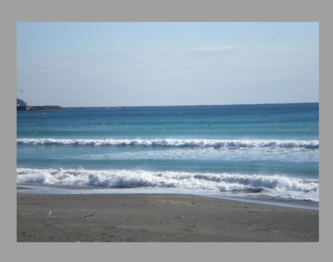 2010年1月16日(土)今日の水彩画は?_f0060461_11192957.jpg