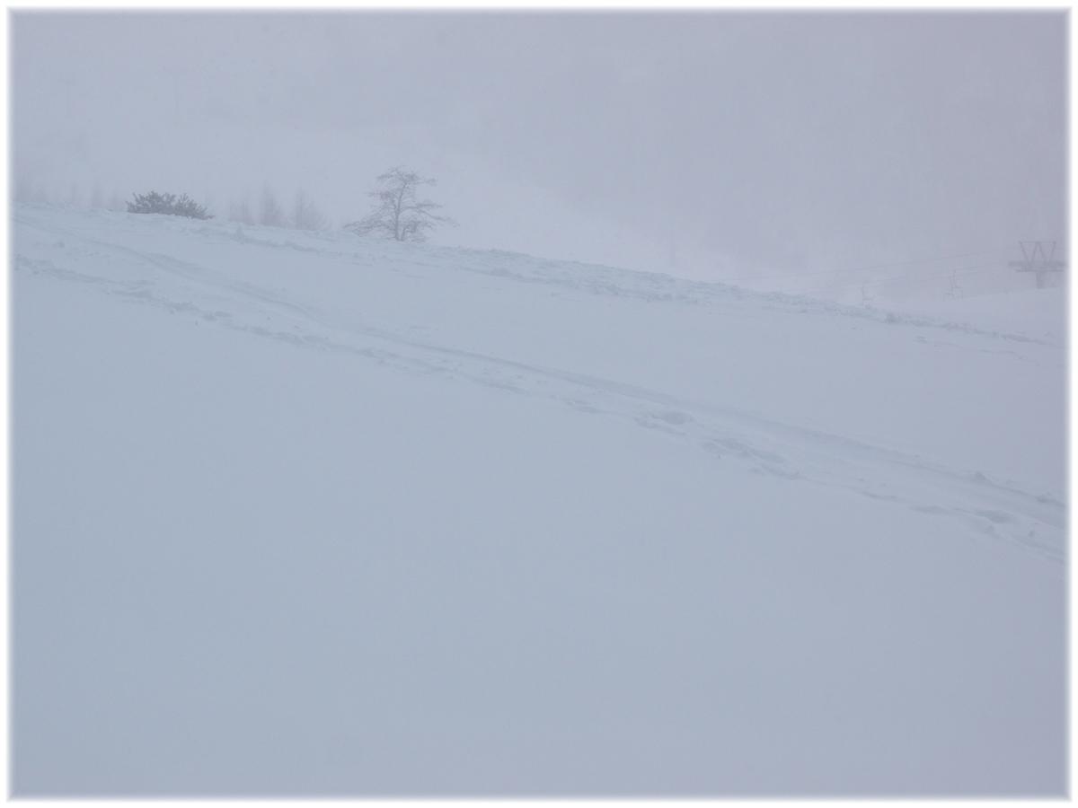 ハチ高原スキー場 6_f0021869_235727.jpg