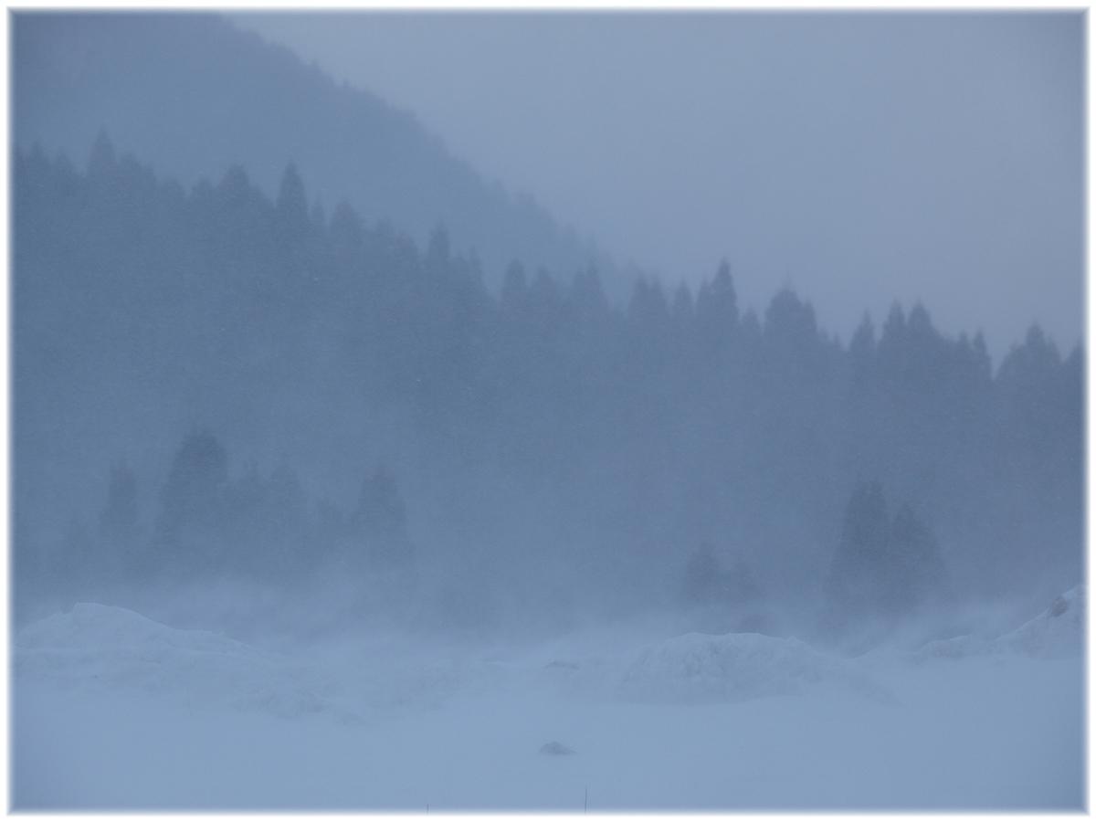 ハチ高原スキー場 6_f0021869_2372479.jpg