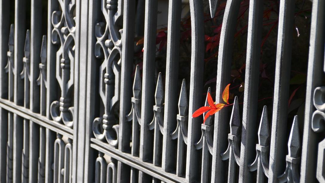門扉に赤い葉っぱ@散歩_d0056382_1593585.jpg