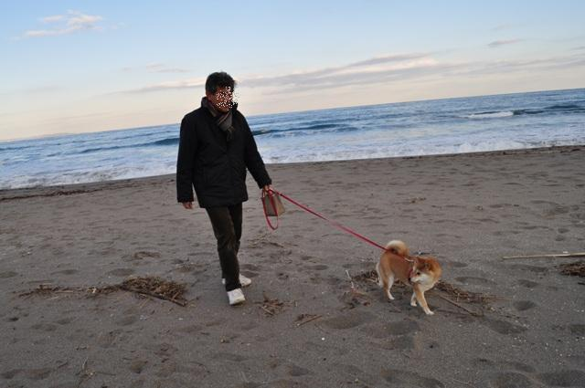 海と花と太陽と_a0126590_2254611.jpg