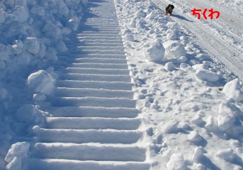 障害物散歩_f0195891_20302067.jpg