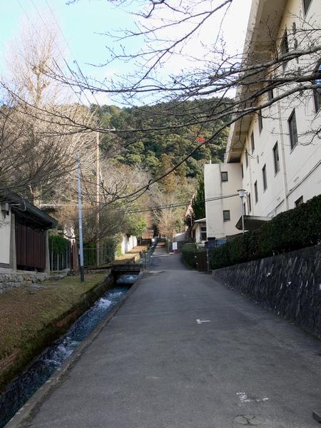 「京都・冬の旅・奥丹の湯豆腐」_d0133024_0332347.jpg