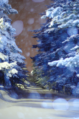 もうひとつの夜_e0168232_944342.jpg