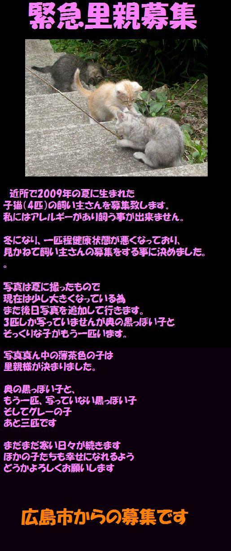 f0197682_23401091.jpg