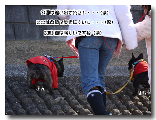 b0134197_1595652.jpg